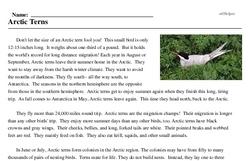 Print <i>Arctic Terns</i> reading comprehension.