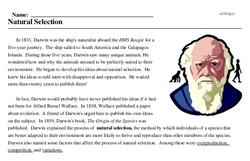 Print <i>Natural Selection</i> reading comprehension.