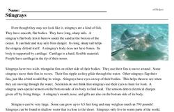 Print <i>Stingrays</i> reading comprehension.