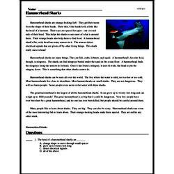 Print <i>Hammerhead Sharks</i> reading comprehension.