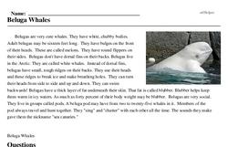 Print <i>Beluga Whales</i> reading comprehension.