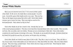 Print <i>Great White Sharks</i> reading comprehension.