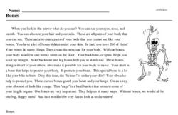 Print <i>Bones</i> reading comprehension.
