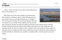 Print <i>Wetlands</i> reading comprehension.