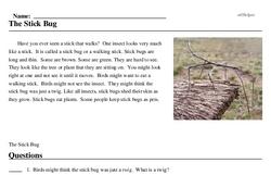 Print <i>The Stick Bug</i> reading comprehension.