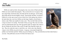Print <i>The Puffin</i> reading comprehension.