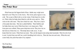 Print <i>The Polar Bear</i> reading comprehension.