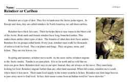 Print <i>Reindeer or Caribou</i> reading comprehension.