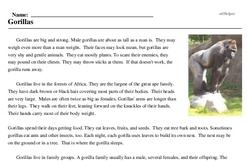 Print <i>Gorillas</i> reading comprehension.
