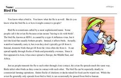 Print <i>Bird Flu</i> reading comprehension.