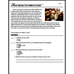 Print <i>A Flower Mystery: Is It a Bulb or a Corm?</i> reading comprehension.