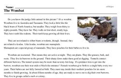 Print <i>The Wombat</i> reading comprehension.