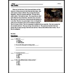 Print <i>The Zebra</i> reading comprehension.