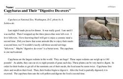 Print <i>Capybaras and Their