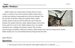 Print <i>Spider Monkeys</i> reading comprehension.