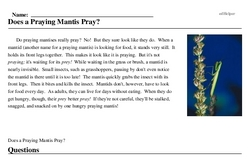 Print <i>Does a Praying Mantis Pray?</i> reading comprehension.