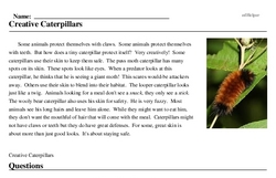 Print <i>Creative Caterpillars</i> reading comprehension.