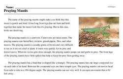 Print <i>Praying Mantis</i> reading comprehension.