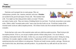 Print <i>Proteins</i> reading comprehension.