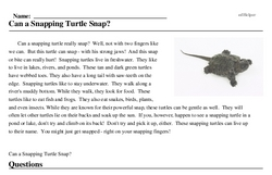 Print <i>Can a Snapping Turtle Snap?</i> reading comprehension.