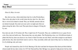 Print <i>Key Deer</i> reading comprehension.