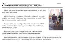 Print <i>How Do Search and Rescue Dogs Do Their Jobs?</i> reading comprehension.
