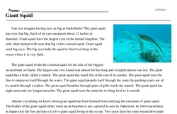Print <i>Giant Squid</i> reading comprehension.