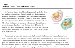 Print <i>Animal Cells: Cells Without Walls</i> reading comprehension.