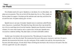 Print <i>Air Plants</i> reading comprehension.