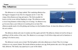 Print <i>The Albatross</i> reading comprehension.