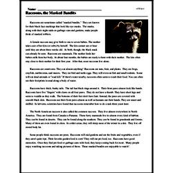 Print <i>Raccoons, the Masked Bandits</i> reading comprehension.