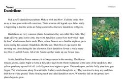 Print <i>Dandelions</i> reading comprehension.