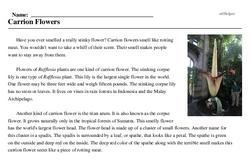 Print <i>Carrion Flowers</i> reading comprehension.