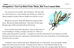 Print <i>Mosquitoes: You Can Run From Them, But You Cannot Hide</i> reading comprehension.