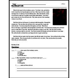 Print <i>Red Blood Cells</i> reading comprehension.
