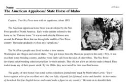 Print <i>The American Appaloosa: State Horse of Idaho</i> reading comprehension.