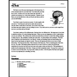 Print <i>The Brain</i> reading comprehension.