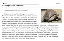 Print <i>Galapagos Giant Tortoises</i> reading comprehension.