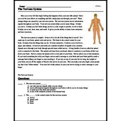 Print <i>The Nervous System</i> reading comprehension.