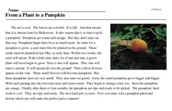 Print <i>From a Plant to a Pumpkin</i> reading comprehension.
