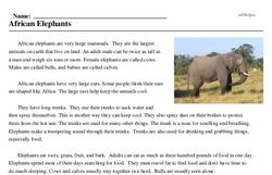 Print <i>African Elephants</i> reading comprehension.