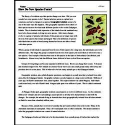 Print <i>How Do New Species Form?</i> reading comprehension.