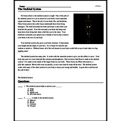 Print <i>The Skeletal System</i> reading comprehension.