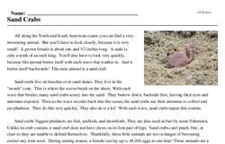 Print <i>Sand Crabs</i> reading comprehension.