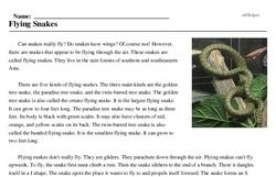 Print <i>Flying Snakes</i> reading comprehension.