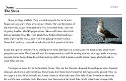 Print <i>The Skua</i> reading comprehension.
