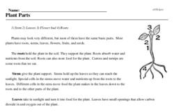 Print <i>Plant Parts</i> reading comprehension.