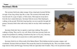 Print <i>Secretary Birds</i> reading comprehension.