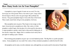 Print <i>How Many Seeds Are In Your Pumpkin?</i> reading comprehension.
