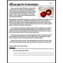 Print <i>Honeycrisp Apples- The